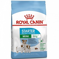 Royal Canin MINI Starter 1,0