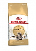 Royal Canin Maine Coon 4,0